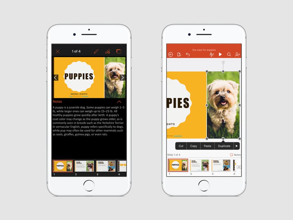 5 приложений, которые помогут создать презентацию на iPhone — Блог re:Store Digest